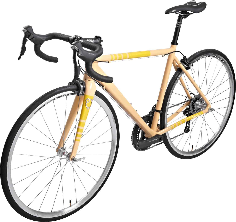 FitWell Bicycle Company DeGroot III